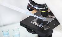 표면(Surface) 미생물 오염도 측정